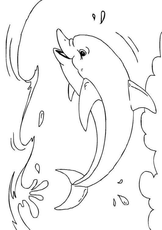 Kleurplaat Dolfijn Kinderen Leren Terwijl Ze Kleuren Afbeeldingen Voor Scholen En Onderwijs Afb 2723 Vissen Tekenen Zomer Kleurplaten Japanse Tatoeagekunst