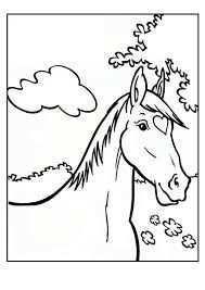 Amika Google Zoeken Kleurplaten Paarden Thema