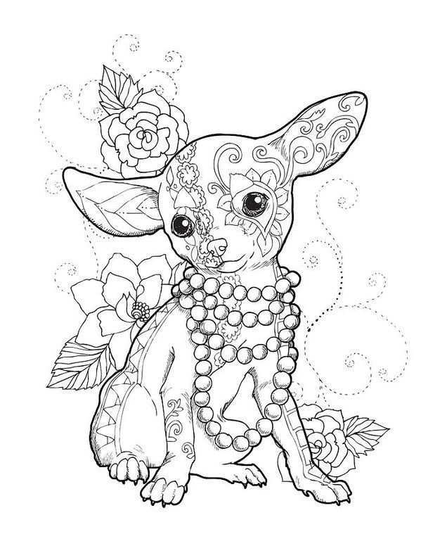 Chihuahua Chic Art Print By Cindy Elsharouni In 2021 Dog Coloring Page Cute Coloring Pages Coloring Books
