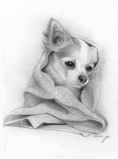 Pin By Annette On Kleurplaten Voor Volwassenen Pencil Portrait Dog Drawing Animal Sketches