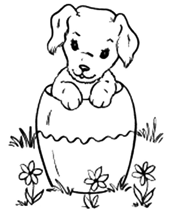 Chihuahua Dog Inside Pottery Coloring Pages Netart In 2020 Dog Coloring Page Coloring Pages Chihuahua Dogs