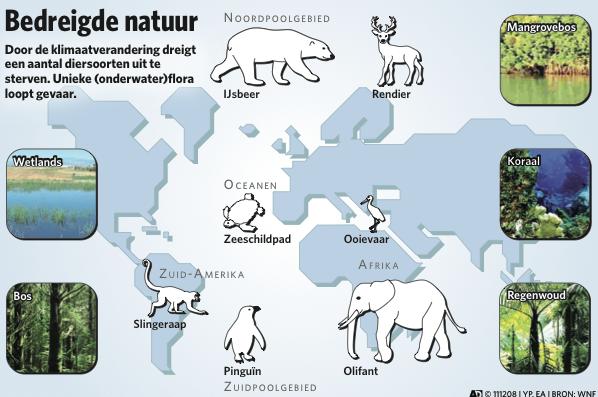 Algemeen Dagblad Animals Dieren Flora Nature Natuur Planten Uitsterven Fauna Bedreigd Ymke Pas Infographic Laten Make Dieren Wilde Dieren Dierenrijk