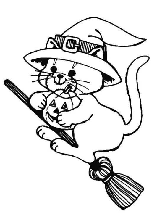 Kleurplaat Poes Op Bezem Kleurboek Gratis Kleurplaten Halloween Kat