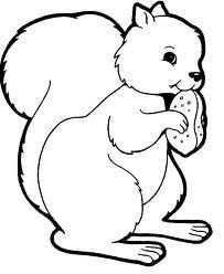 Eekhoorn Kleurplaat Google Zoeken Eekhoorn Herfst Knutselen Kinderen Herfst Bomen