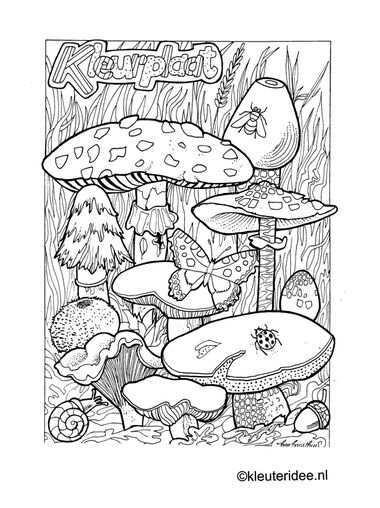 Kleurplaat Herfst Paddestoelen Kleuteridee Nl Autumn Mushrooms Preschool Coloring In 2020 Kleurboek Kleurplaten Boek Bladzijden Kleuren