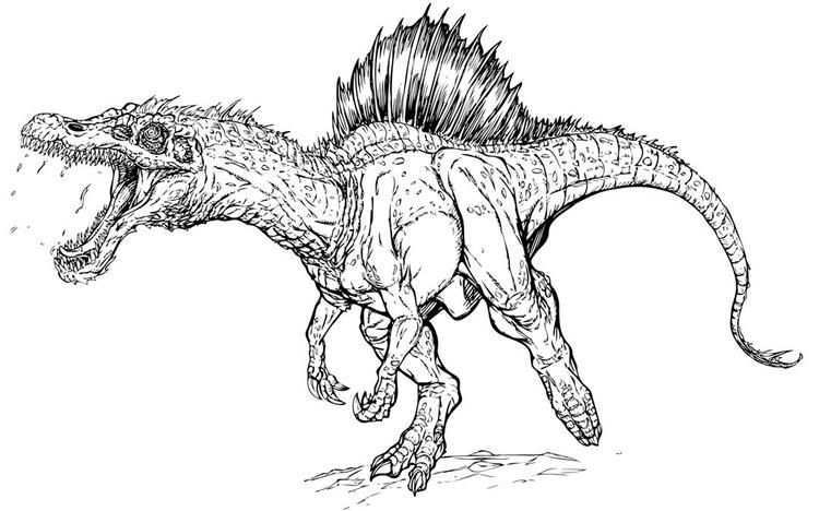 Jurassic Park Coloring Pages Spinosaurus Dinosaur Coloring Pages Spinosaurus Dinosaur Sketch