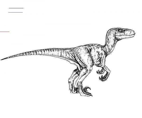 Velociraptor Color Page Jurassicparkworld Jurassic Park Dinosaurus Kleurboek