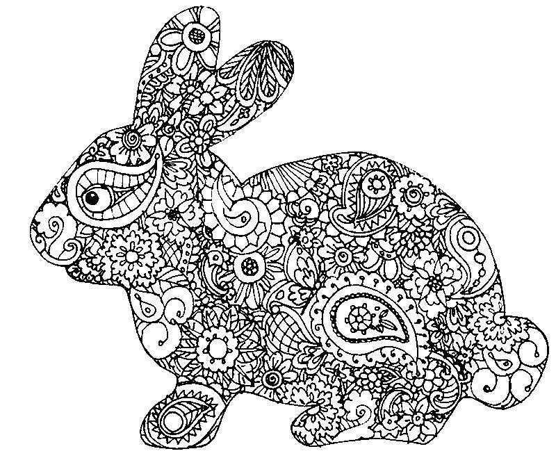 Konijn Kleurplaat Bunny Coloring Pages Easter Coloring Pages Animal Coloring Pages
