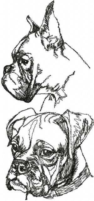 Boxer Dog Set Boxer Dogs Dog Sketch Dog Drawing