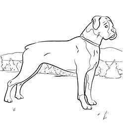Online Coloring Pages Of Your Favorite Dog Breed Honden Kleurplaten Knutselen