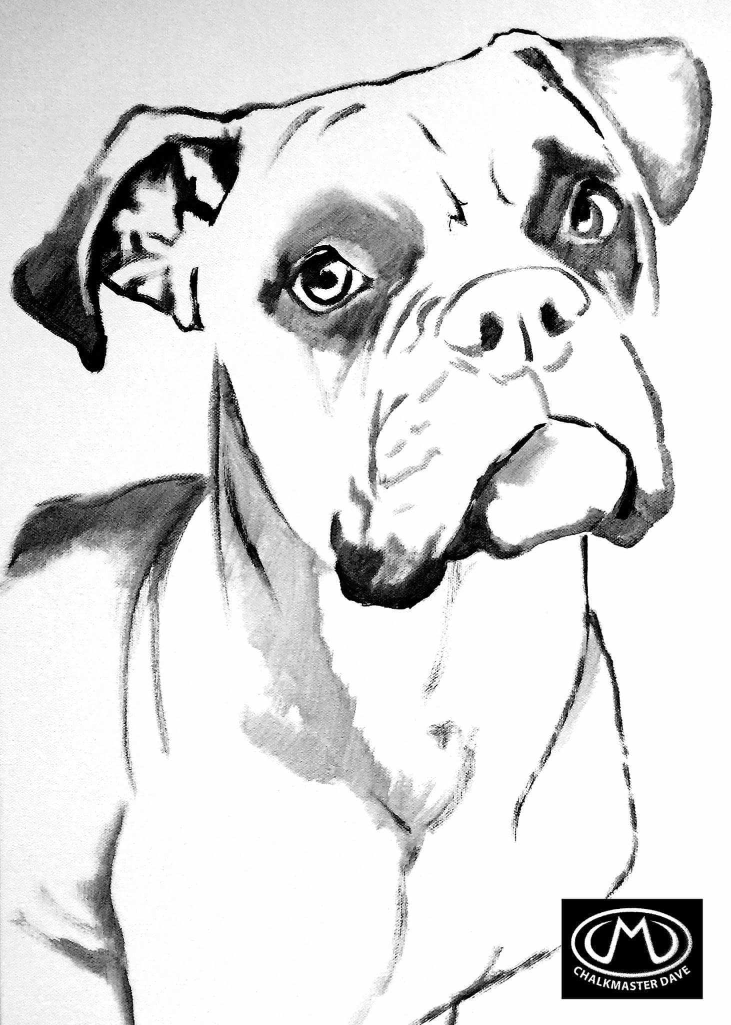 Boxer Colouring Page Boxer Dogs Art Boxer Painting Dog Drawing