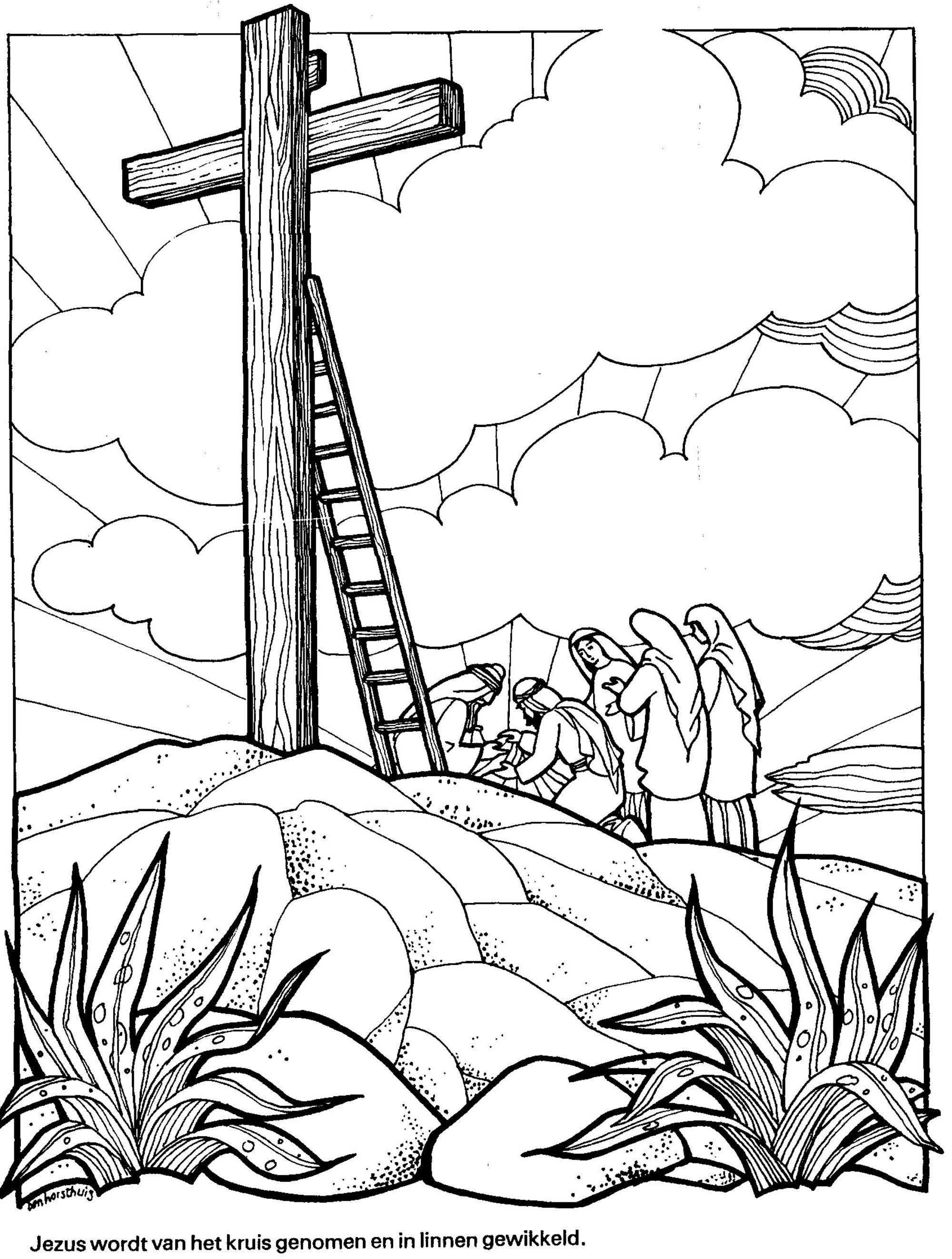 Troetelbeertjes Kleurplaten Bijbel Kleurplaten Afbeeldingen