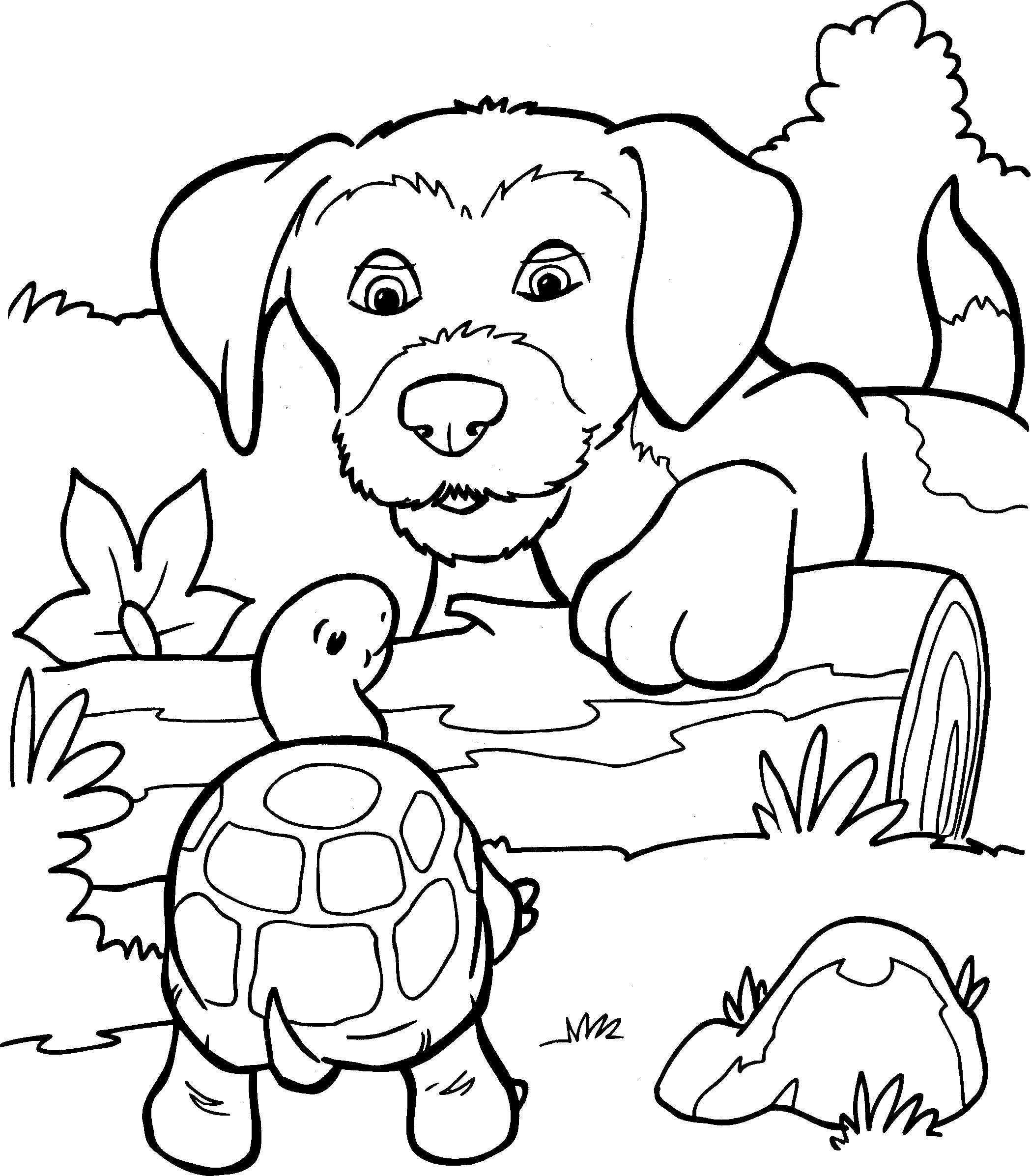 Honden Kleurplaat 30 20100201 1364862034 Jpg 2098 2394 Kleurplaten Voor Kinderen Kleurplaten Dieren Kleurplaten