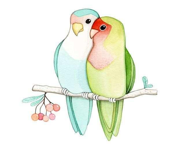 Joojoo February New Love Birds Vogels Tekenen Eenvoudige Tekeningen Verfkunst