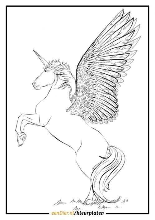 Kleurplaat Eenhoorn Eenhoorn Tekenen Eenhoorn Vleugels Tekening