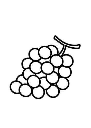 Kleurplaat Druiven Afb 23175 Knutselen Eten En Drinken Druiven Peuterspeelzaal Ideeen