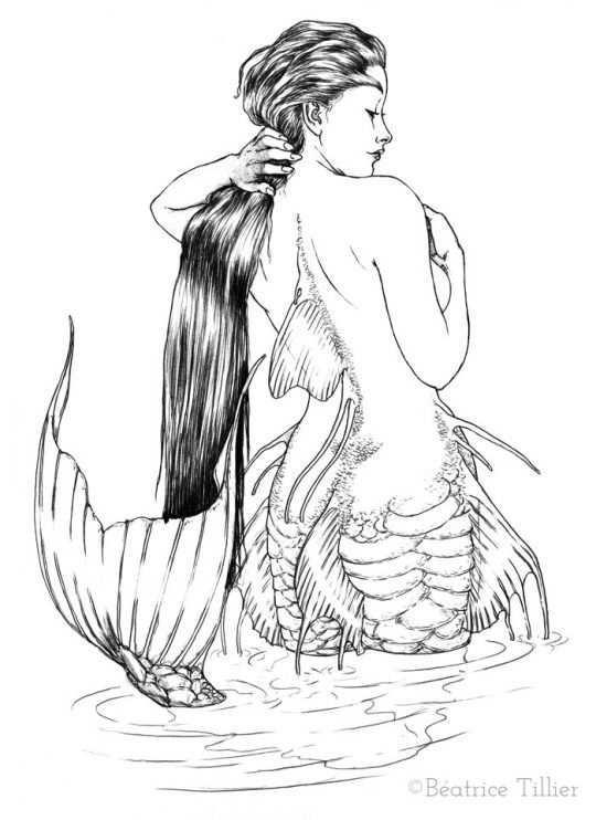 Pin By Evelyne Kennis On Mermaids Mermaid Drawings Mermaid Illustration Mermaid Art