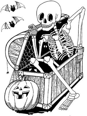 Halloween Witch Wizard Pumpkin Jack O Lantern Trick Or Treat Zombie Mummy Wolfman Vam