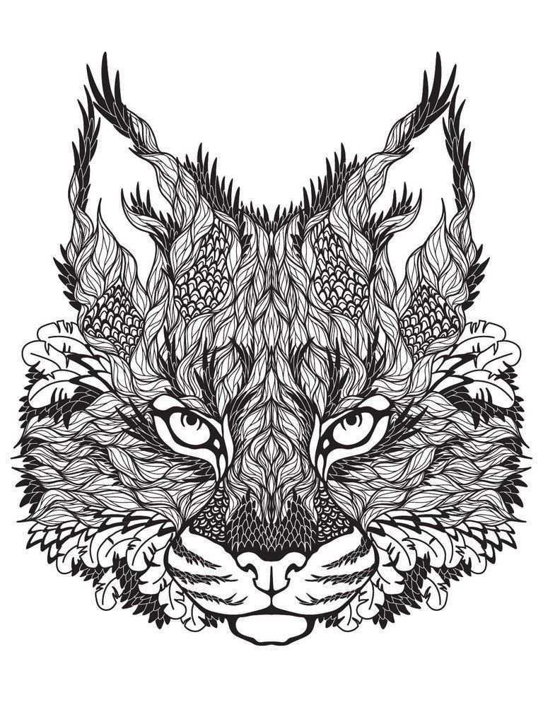 Difficult Lion Coloring Pages Kleurplaten Voor Volwassenen Kleurplaten Dieren Patronen