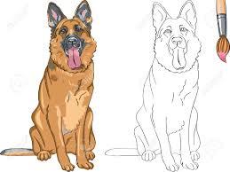 Duitse Herder Tekenen Google Zoeken Hond Illustratie Hond Tekeningen Cartoon Hond