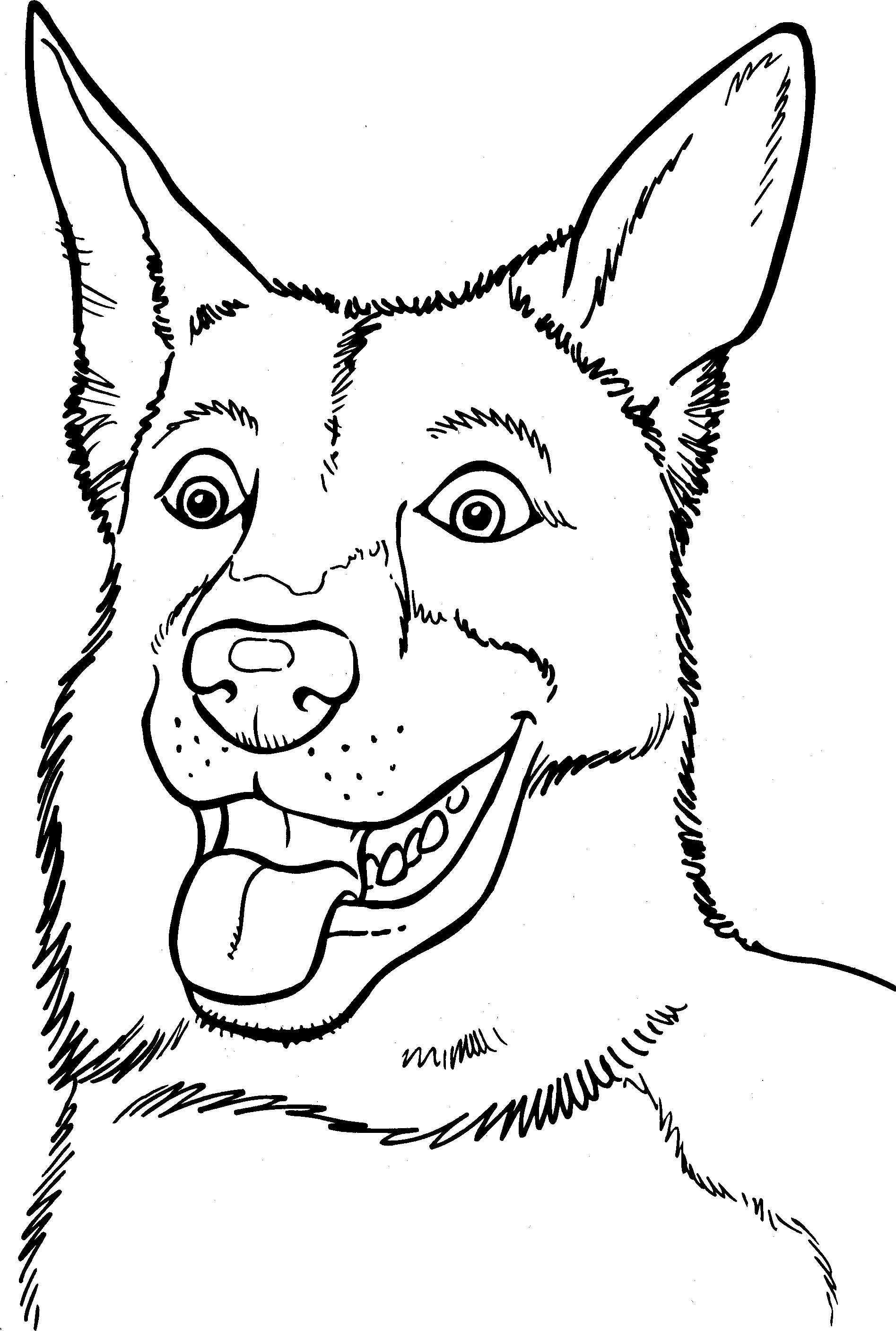 Pin By Dominique Mol On Kleurplaten Op Te Tekenen Dog Coloring Page Dog Coloring Book Animal Coloring Pages