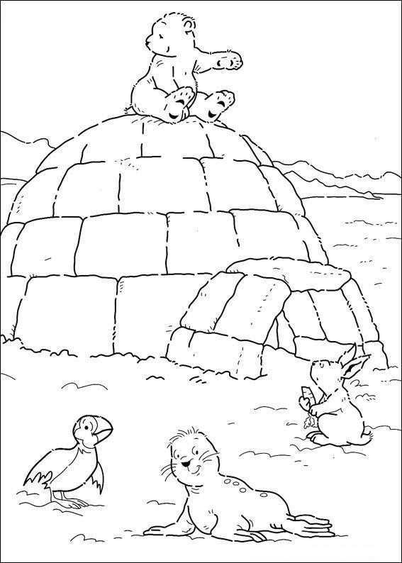 Kleurplaten En Zo Kleurplaten Van Lars De Kleine Ijsbeer Knutselen Noordpool Ijsbeer Noordpool