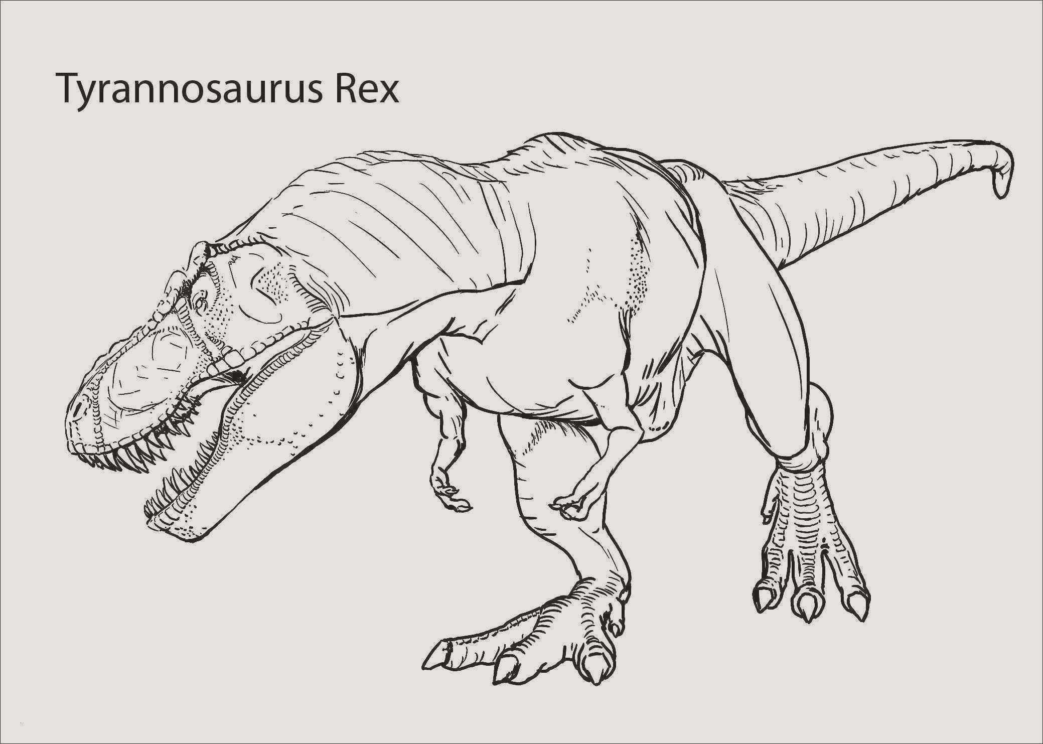 Jurassic Park Coloring Pages Best Of 30 Neu Tyrannosaurus Rex Ausmalbilder Ausdrucken