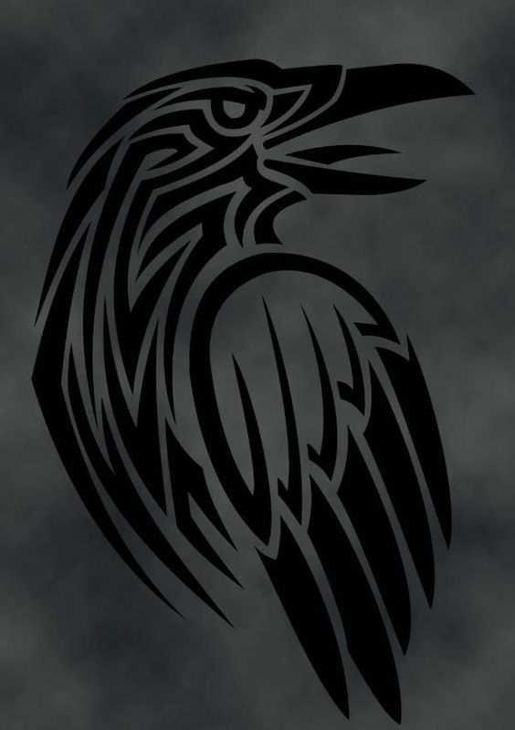 Pin De Shailesh Dixit Em Crows Ravens Corvos Desenho Tatuagem De Corvo Tatoo