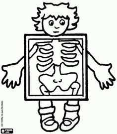 Zvieratk Z Geometrick Ch Tvarov H Ada Googlom Xray Art Alphabet Coloring Pages Coloring Pages