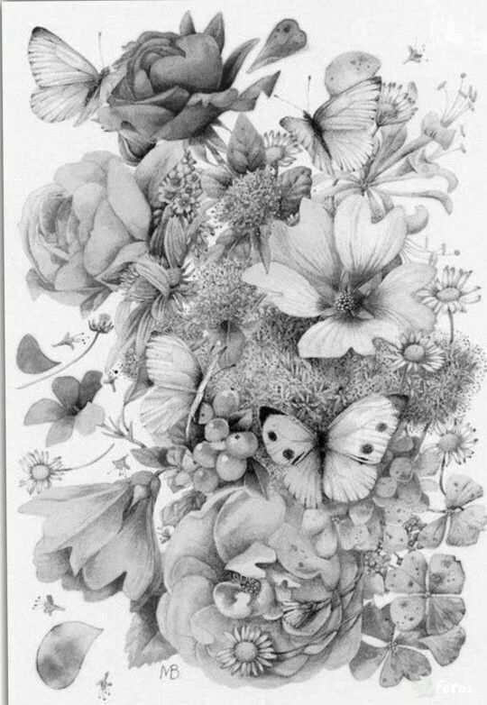 Coloring For Adults Kleuren Voor Volwassenen Aquarellen Illustrator Bloemen Kleurplaten