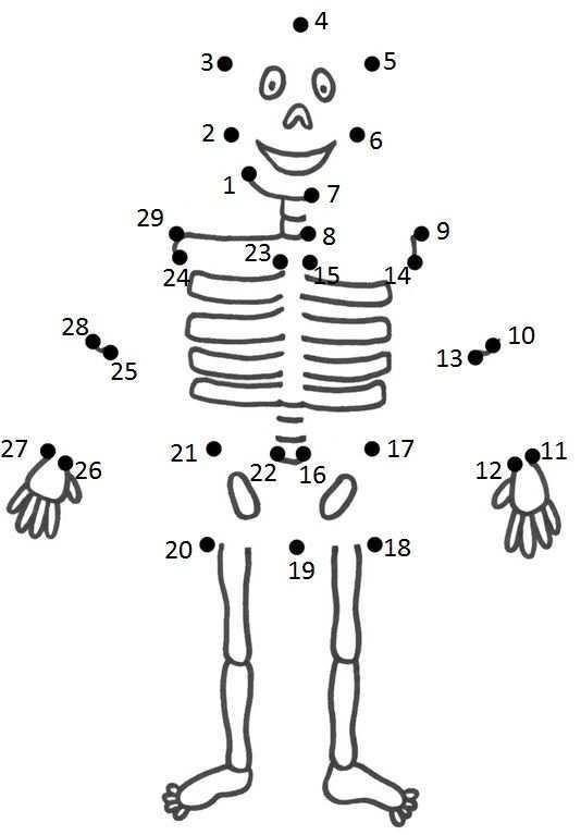 Pin Van Kelly Kubicki Op Coisinhas Criativas Menselijk Lichaam Knutselen Knutselen Thema Ziek Zijn Menselijk Lichaam