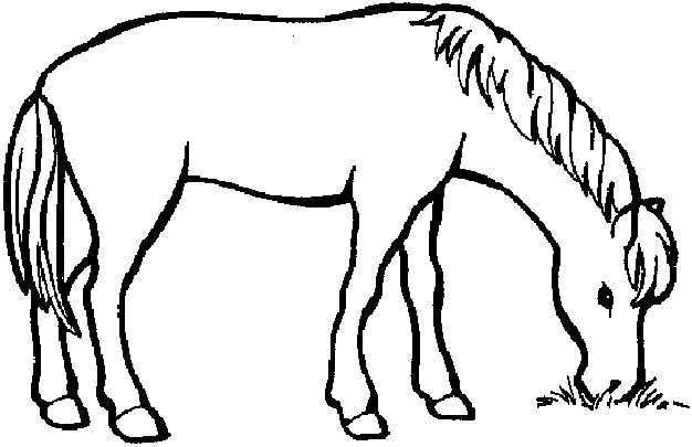 Kleurplaat Kleurplaat Paard 2249 Kleurplaten Paard Tekeningen Paarden Kleurplaten