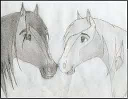 Paarden Tekenen Google Zoeken Paard Tekeningen Dieren Tekenen Paarden