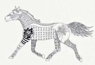 Efie Goes Zentangle Ben Kwok Paard Paarden Zentangle Dieren