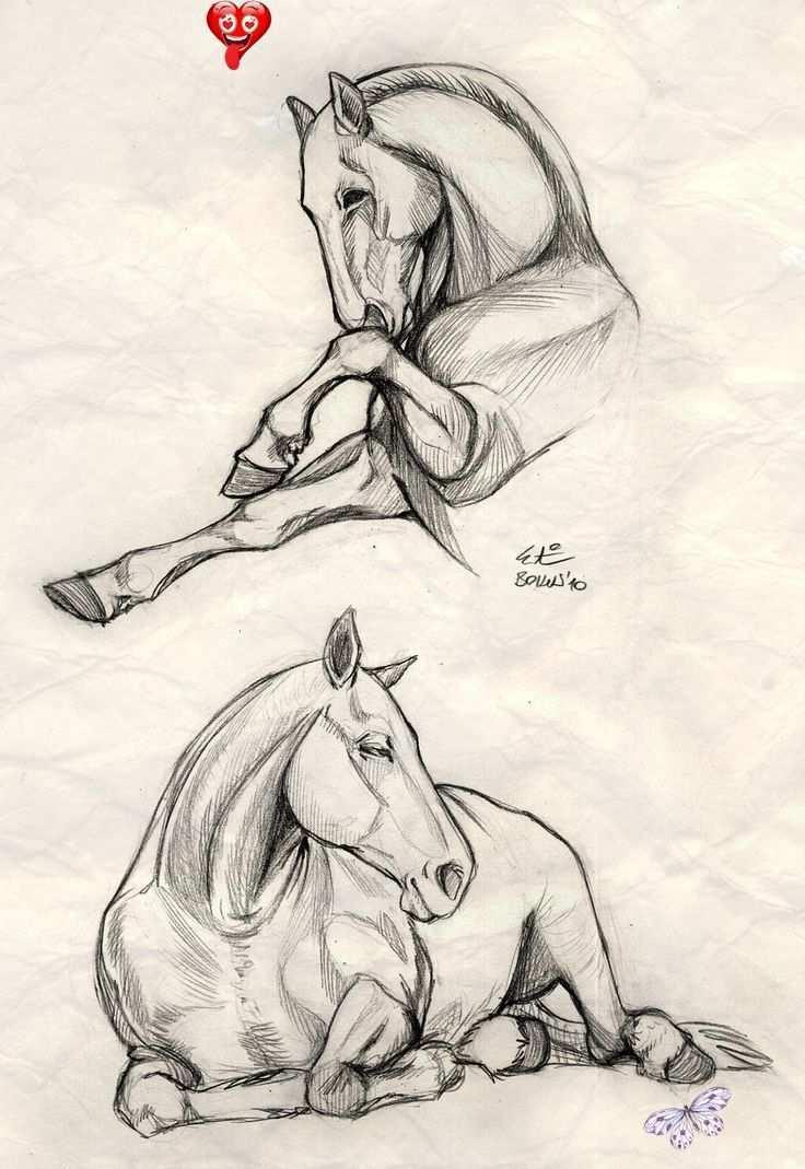 Moeilijk Paard Tekenen Dieren Tekenen Dierentekenen Animals Animados Br Paard Tekeningen Dieren Tekenen Dierentekening