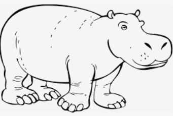 Pin Van Ton Op Hippo S Kleurplaten Nijlpaard Dieren