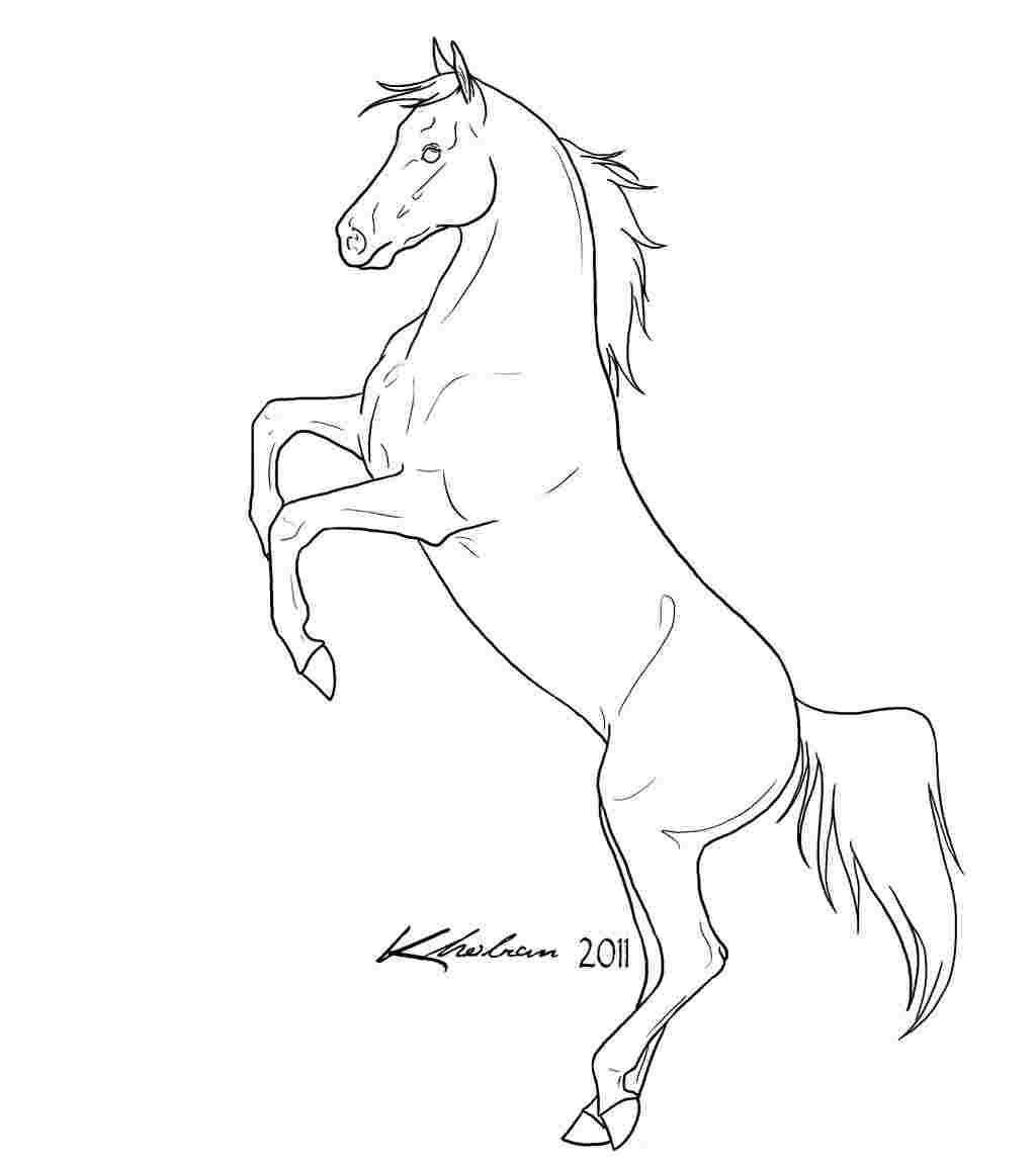 Rearing Horse Coloring Pages In 2020 Horse Coloring Pages Horse Coloring Horse Outline