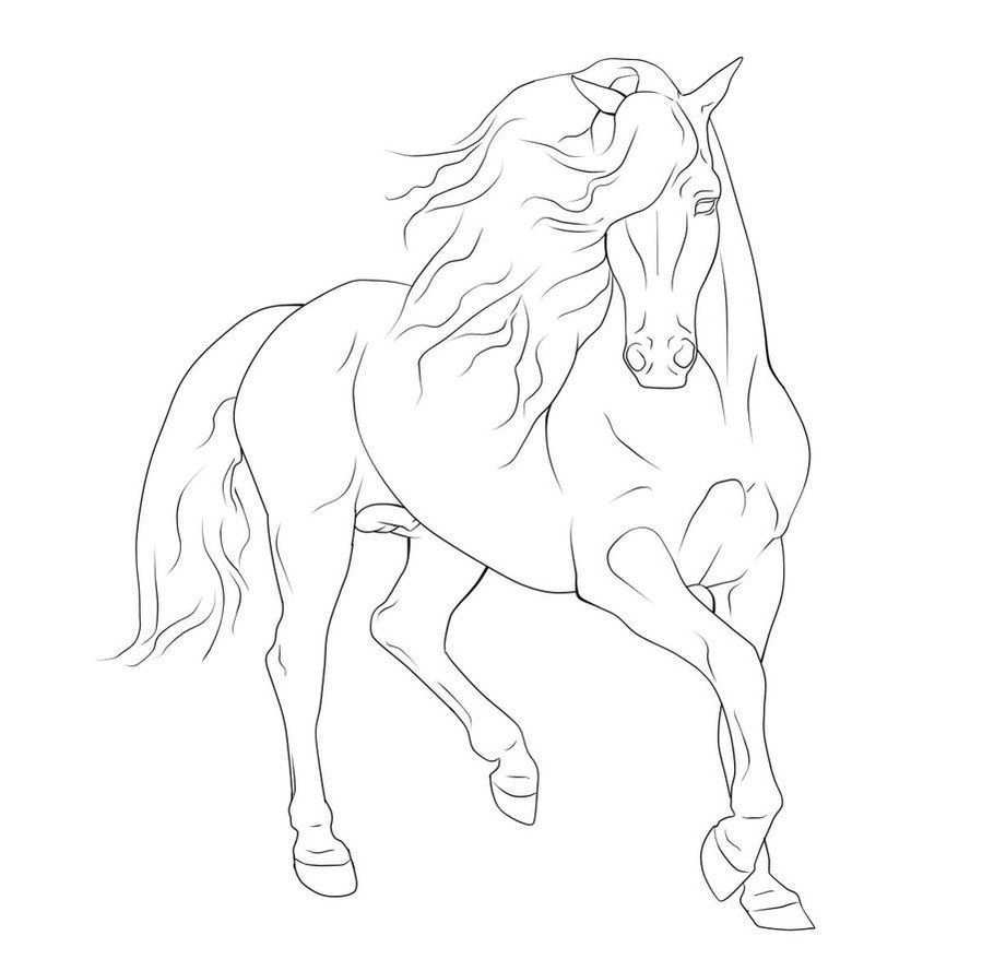 Gaited Horse Lineart Google Search Horse Coloring Pages Horse Drawings Horse Coloring