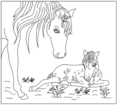 Paard Met Veulen Kleurplaat Google Zoeken Kleurplaten Gratis Kleurplaten Paarden
