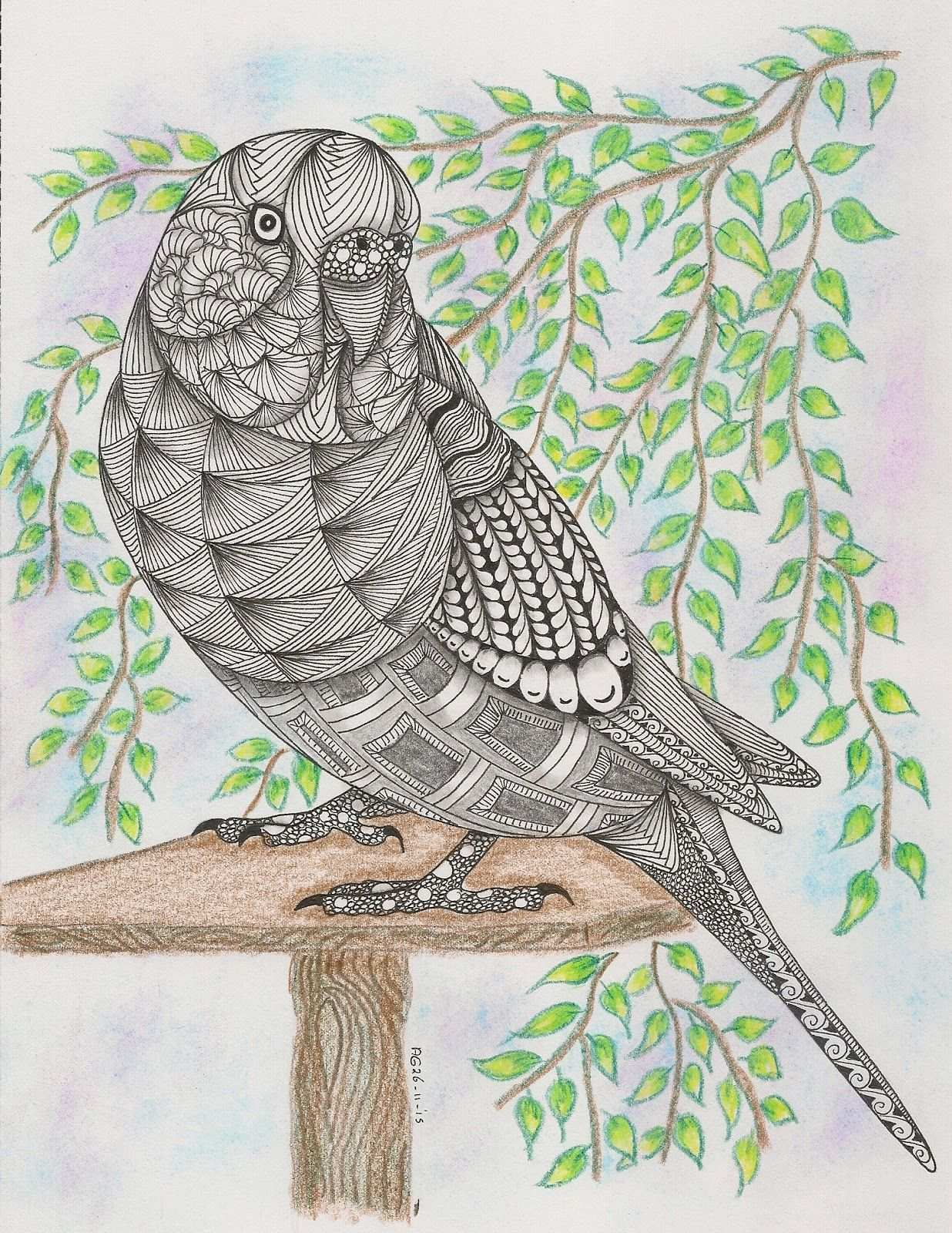 147 Parakeet Template Van Ben Kwok Zentangle Kunst Parkiet Dierenillustraties