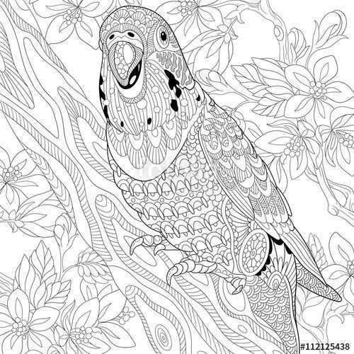 Afbeeldingsresultaat Voor Kea Draw Mandala Kleurplaten Kleurboek Dieren Kleurplaten