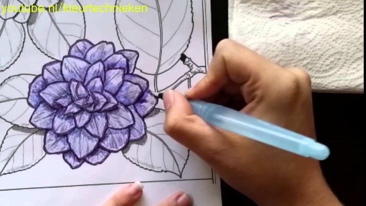 Bloem Kleuren Met Aquarel Effect 1 Kleuren Voor Volwassenen Youtube Aquarel Potloden Kunst Aquarel Kleurpotloden