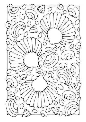 Kleurplaat Schelpen Afb 21815 Kleurplaten Gratis Kleurplaten Schelpen
