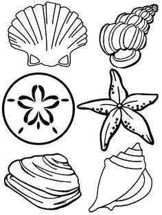 Schelpen Summer Coloring Pages Beach Coloring Pages Free Coloring Pages