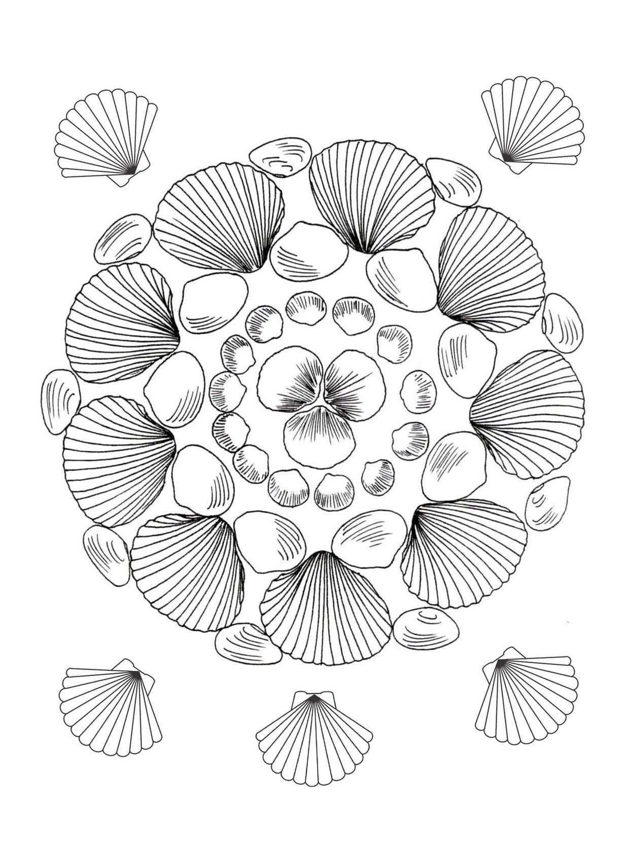 Mandala Schelpen Kleurplaten Mandala Schelpen