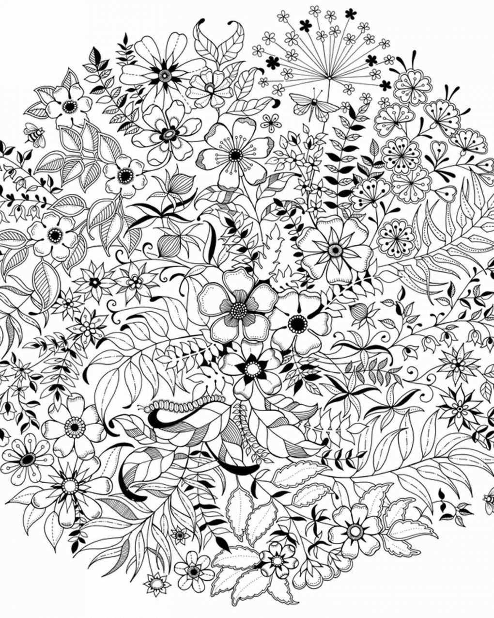 Secret Garden Coloring Pages Garden Charming Garden Decorating Plans With Garden Coloring Pages Entitlementtrap Com Mandala Kleurplaten Kleurboek Kleurplaten