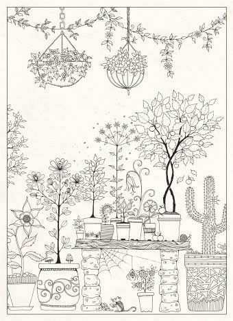 Pin On Coloring Pages Johanna Basford Artwork