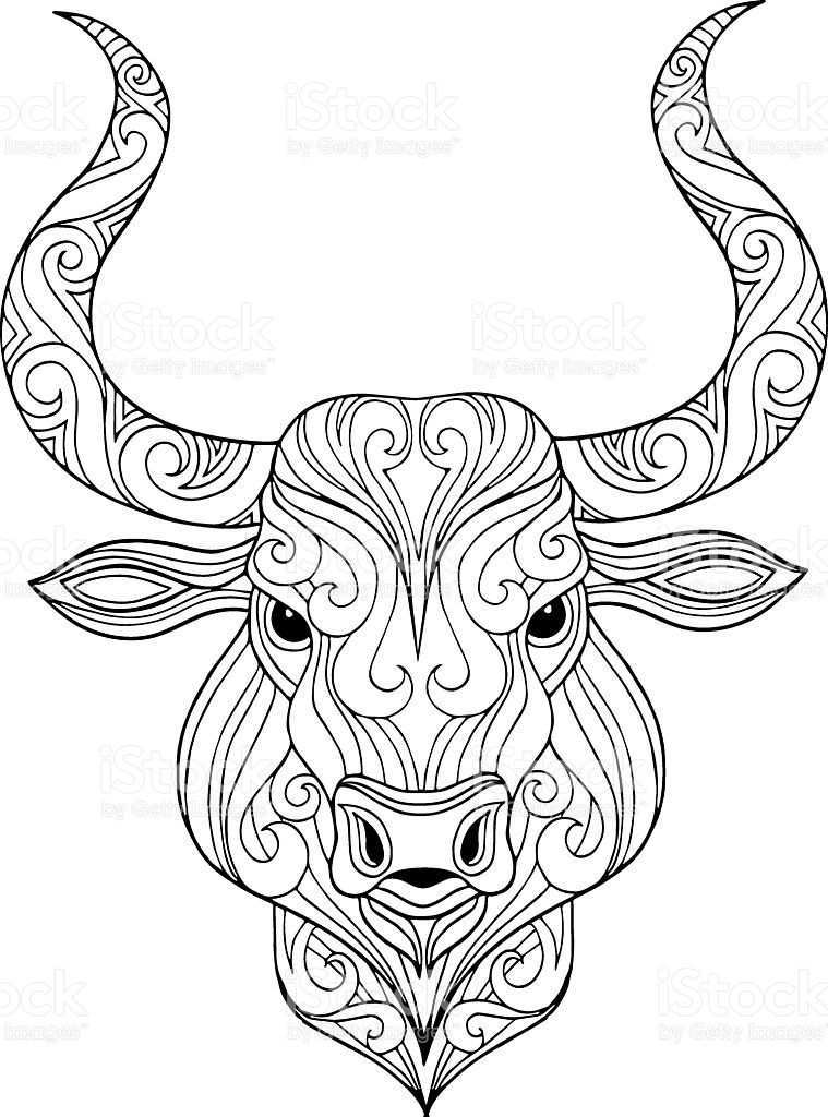 Hand Drawn Ornate Doodle Bull Head Illustration For Coloring Book In 2020