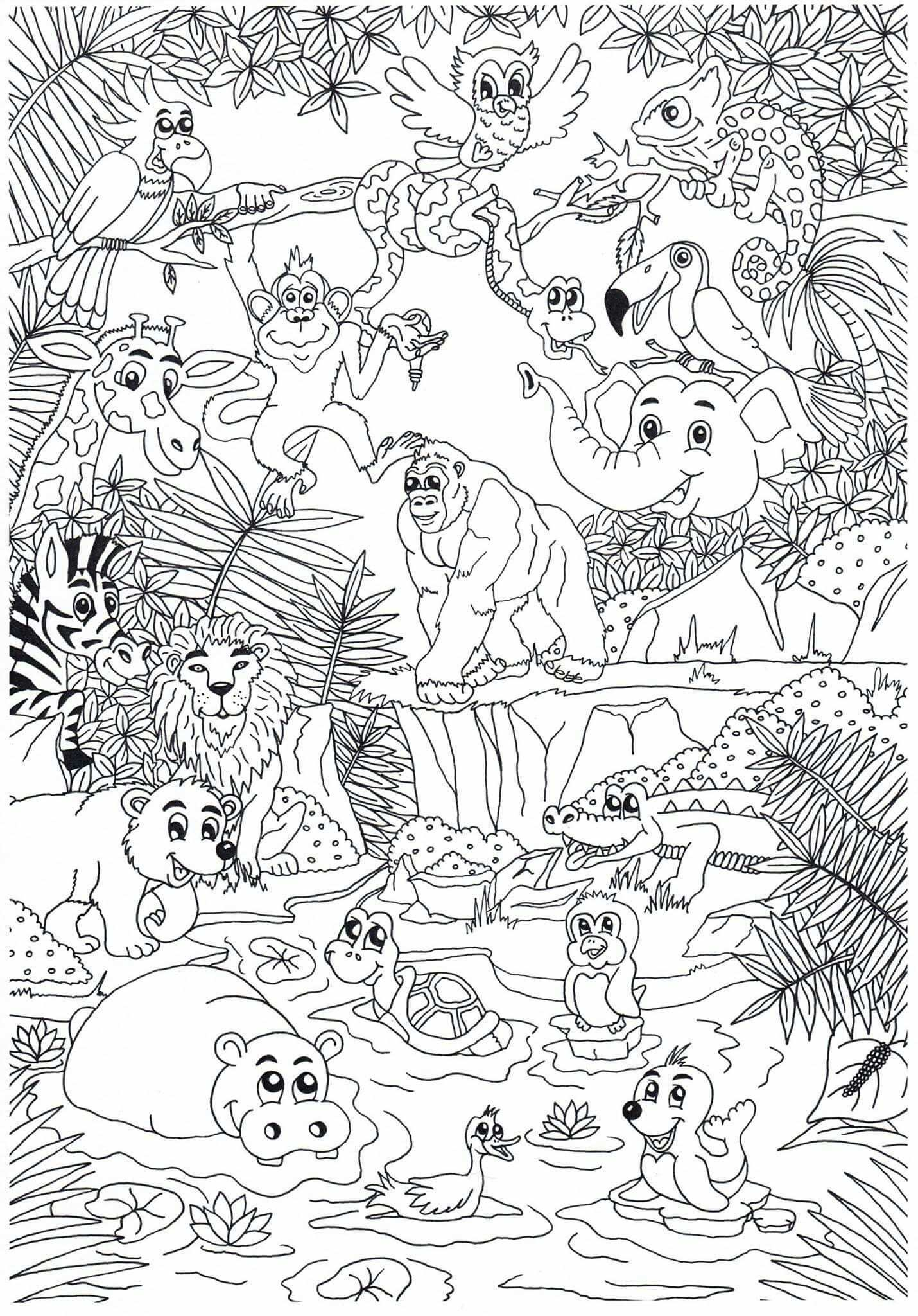 Dierentuin Zoo Animals Click The Pict Or Link To See And Download Another Coloring Page Zoo Coloring Pages Jungle Coloring Pages Zoo Animal Coloring Pages