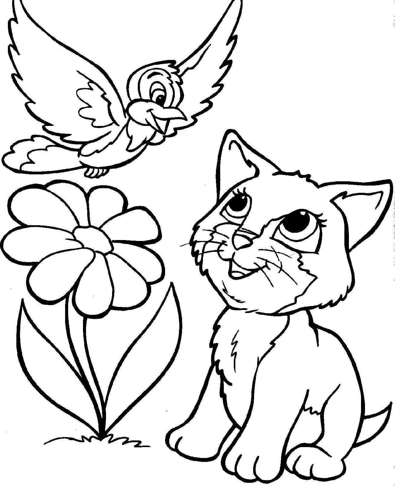 Vogel En Kat Dieren Kleurplaten Kleurplaten Dieren